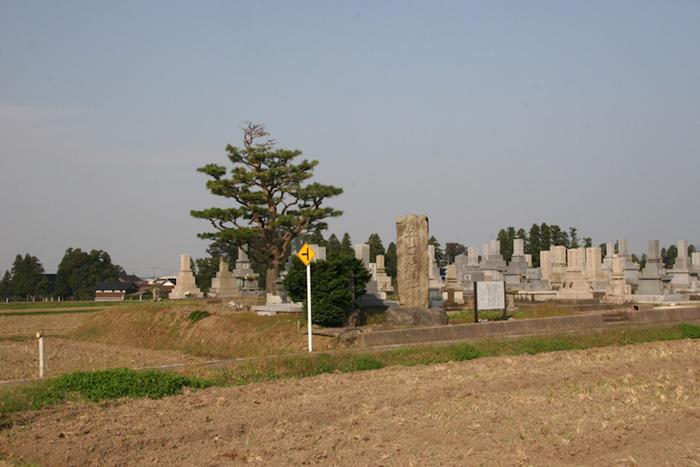 井口城址の画像
