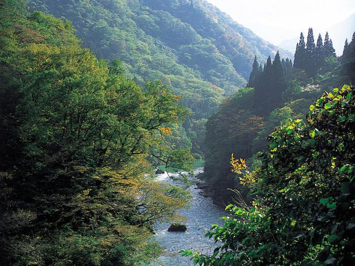 遠洞渓谷の画像